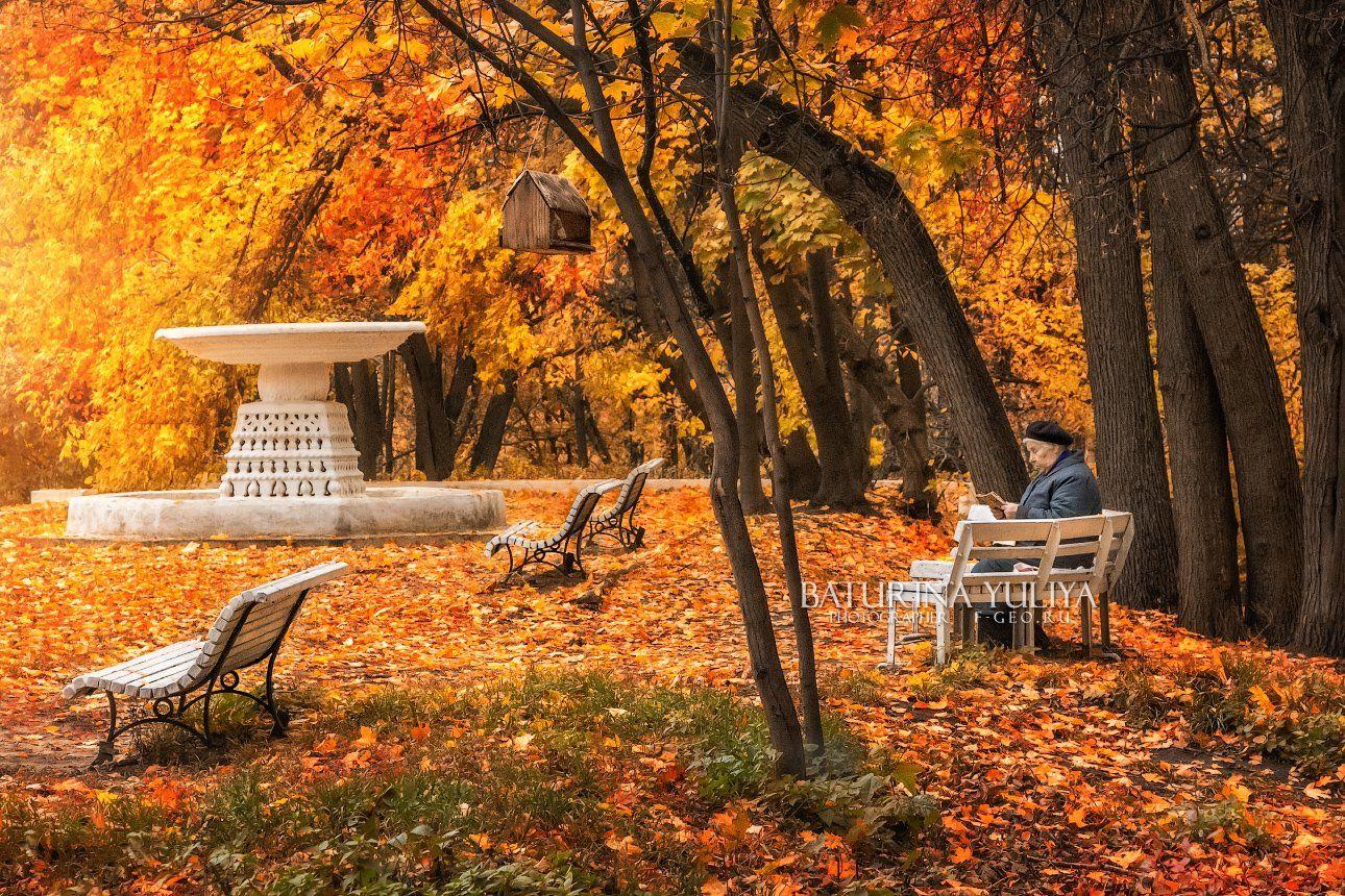 москва, нескучный сад, осень, Юлия Батурина
