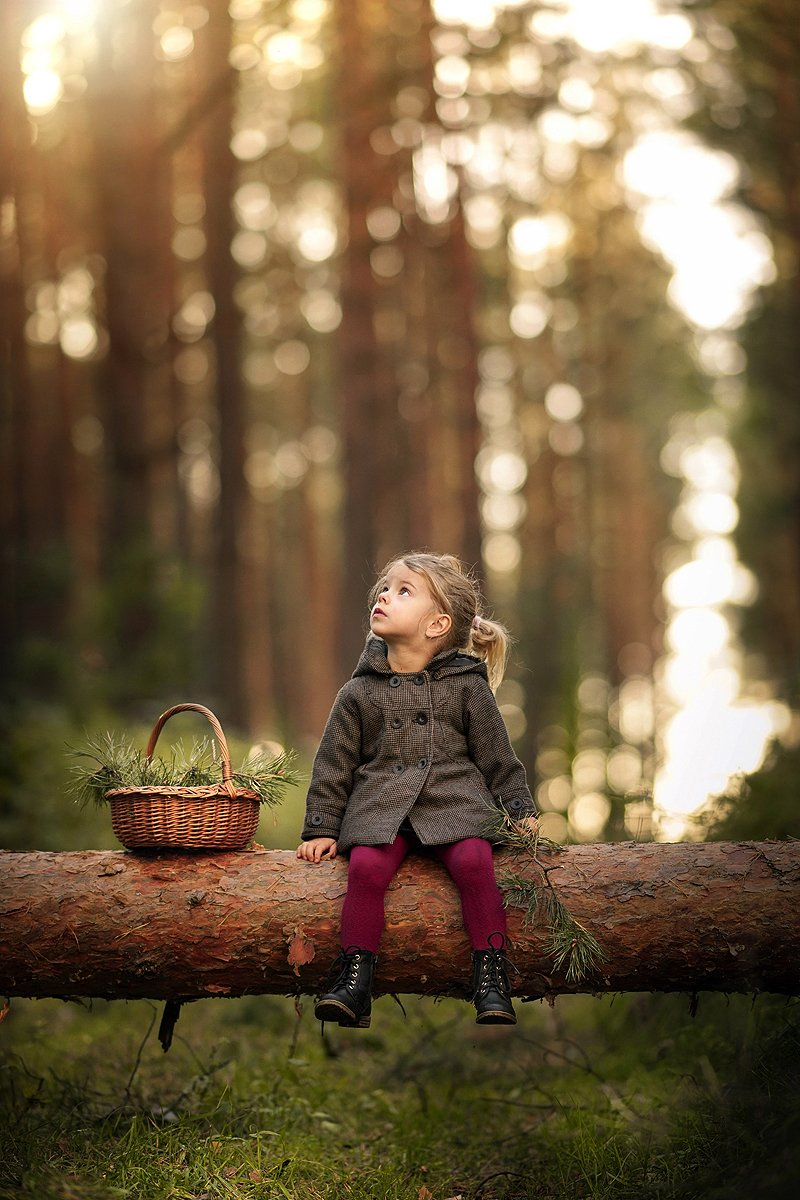 little girl magical forest bokeh trees fallen tree sunlight dranikowski, Radoslaw Dranikowski