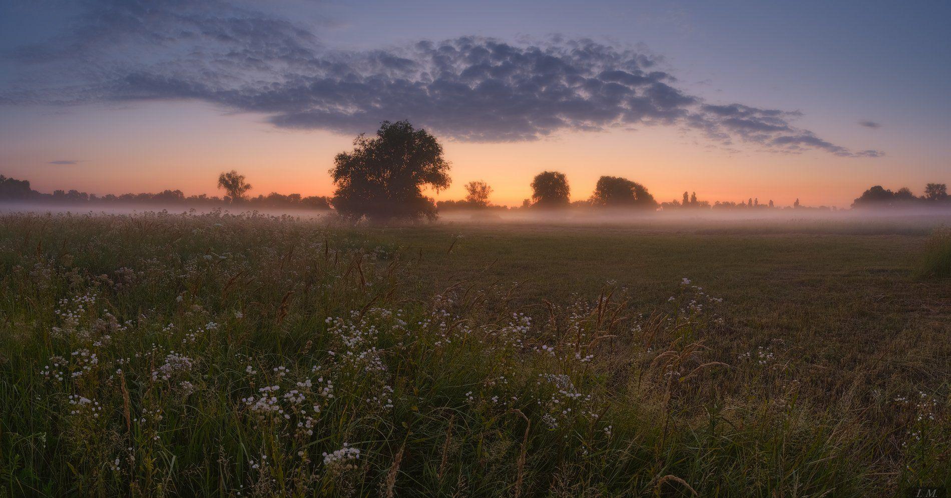 утро, рассвет, сумерки, туман, облака, лето, июль, луг, свет, панорама, пейзаж, sunrise, idyllic, dawn, horizon, dramatic sky, moody sky, tranquility, grass, sky, clouds, summer, green, outdoors, tree, light, morning, sunlight, beautiful, fog, misty, glow, Ivan Maljarenko