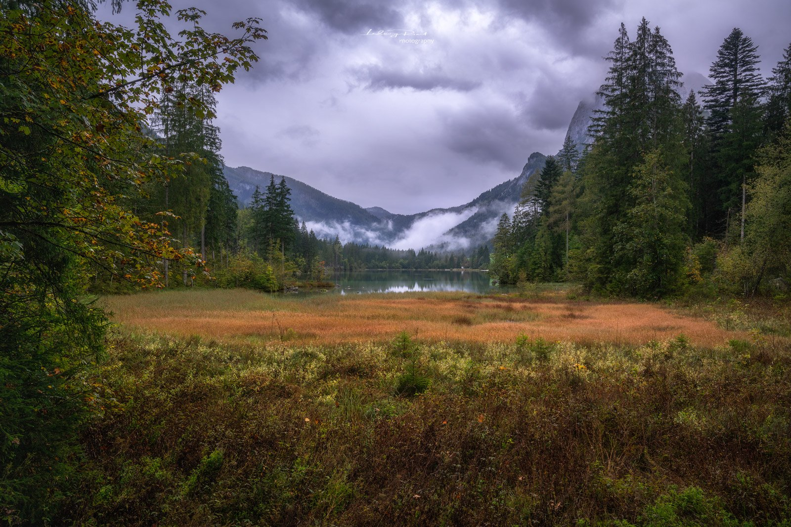 autumn, bavaria, beach, berchtesgaden, calm lake, calmness, europe, fall, fall colours, flags, fog, foggy, forest, germany, grass, green, harmony, hintersee, lake, late summer, marsh, marsh land, morning, mountain range, mountains, nature, orange, outdoor, Ludwig Riml