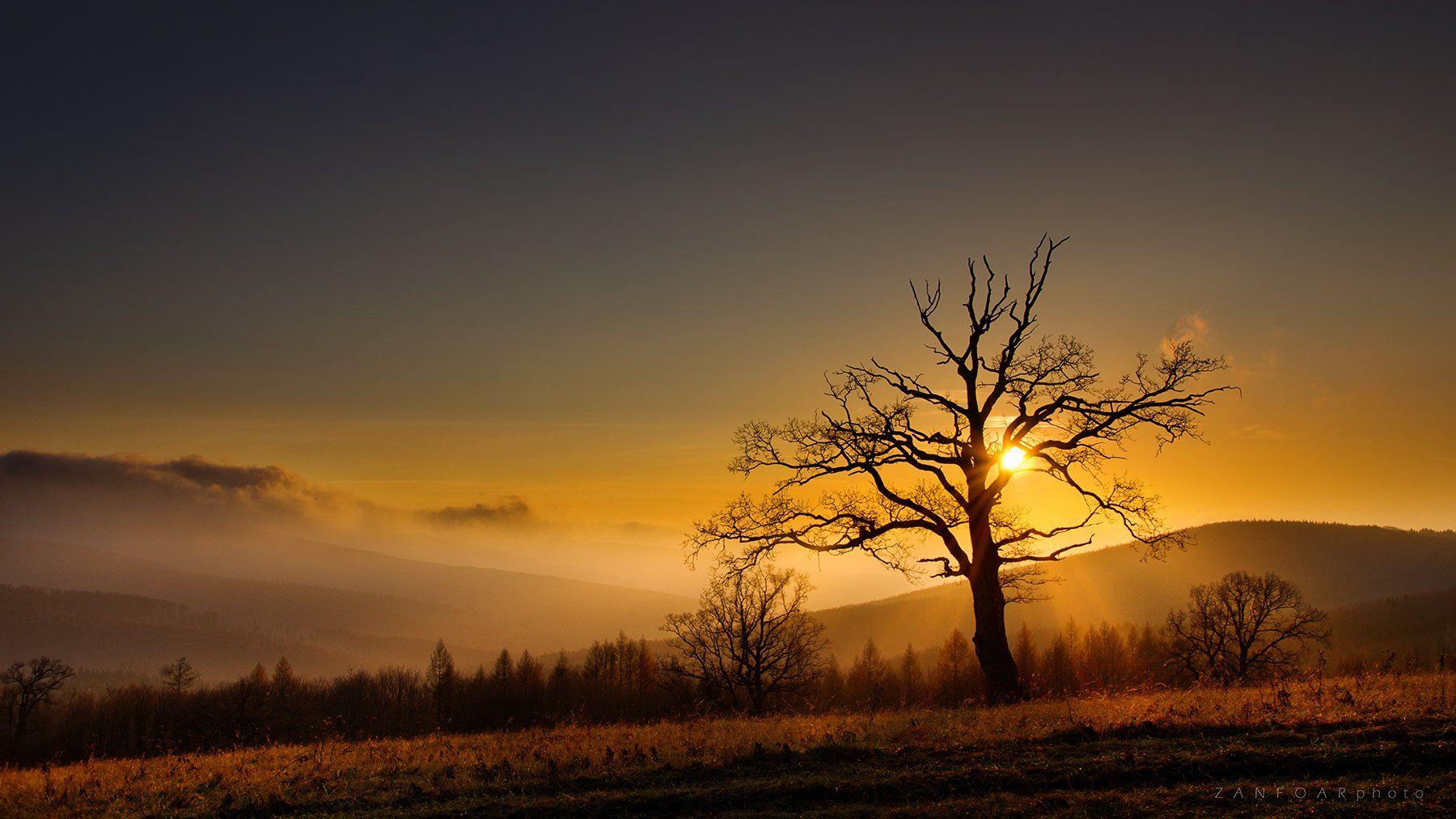 white carpathians,lanscape,landscape,horizont,sunsat,sun,tree,soliter,autumn,rays,zanfoar,czech republi,чехия, Zanfoar