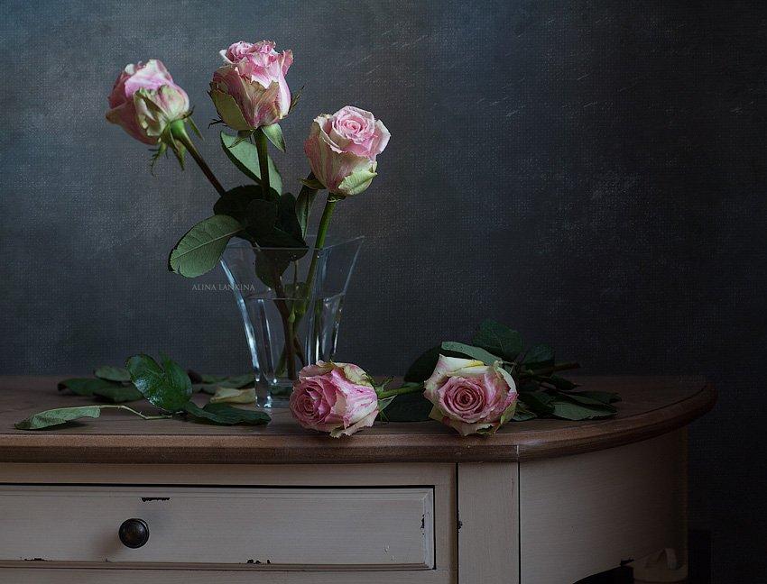 натюрморт, фотонатюрморт, цветы, розы, свет, Алина Ланкина