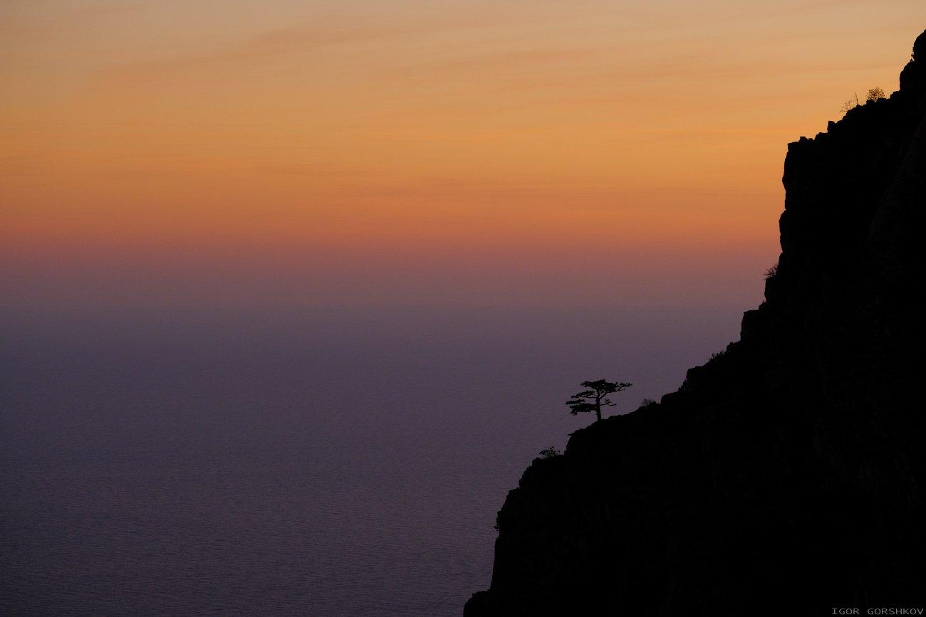 крым, горы,закат,вечер,пейзаж,скалы,дымка,дерево,море,бесконечность, Горшков Игорь