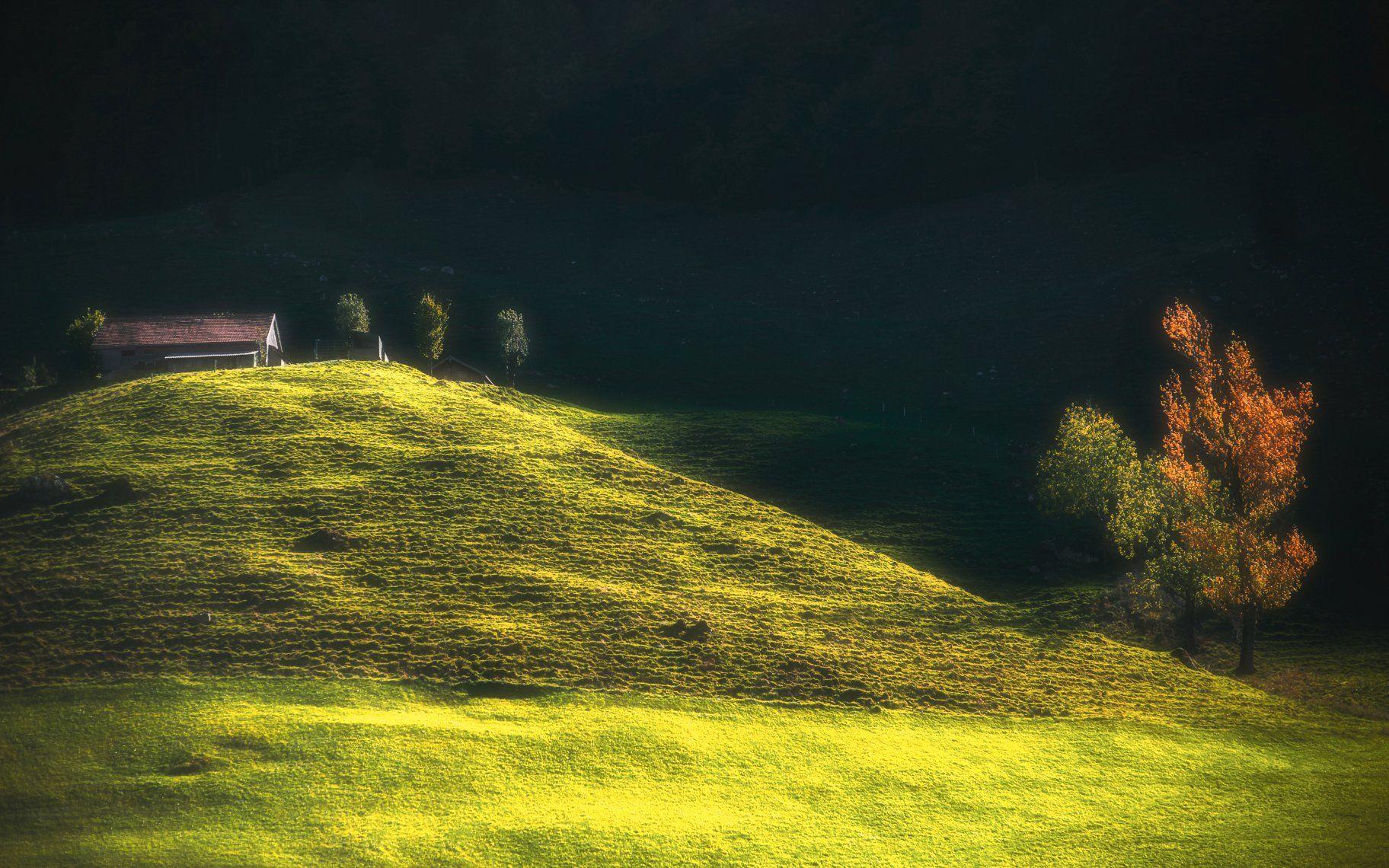 landscape,light,autumn,switzerland,travel, Olegs Bucis