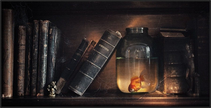 fish,glass,books,still life,art,photos,пыль,книги,банка,рыбка,свет,арт,фото,натюрморт,владимир,шипулин, Vladim_Shipulin