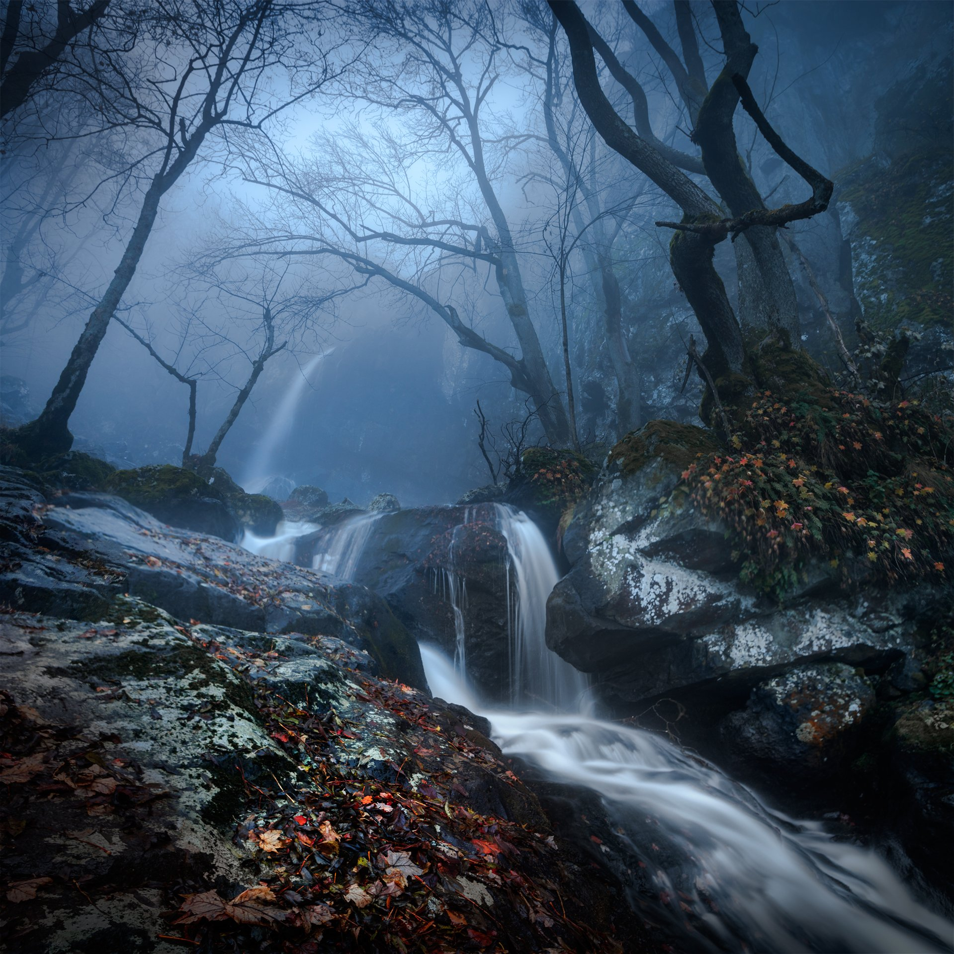 landscape, nature, scenery, forest, wood, mist, misty, fog, foggy, waterfall, fall, autumn, mountain, vitosha, bulgaria, туман, лес, Александър Александров