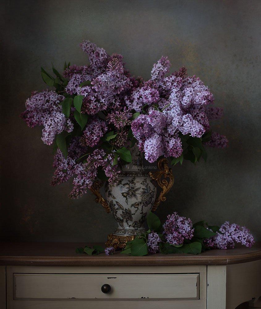 натюрморт, цветы, букет, сирень, весна, ваза, свет, Алина Ланкина