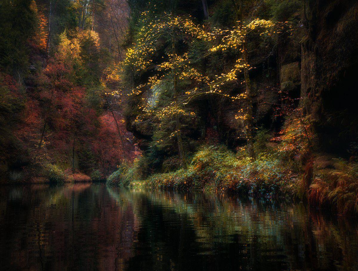 Осень, деревья, скалы, вода, ручей, Cтанислав Малых