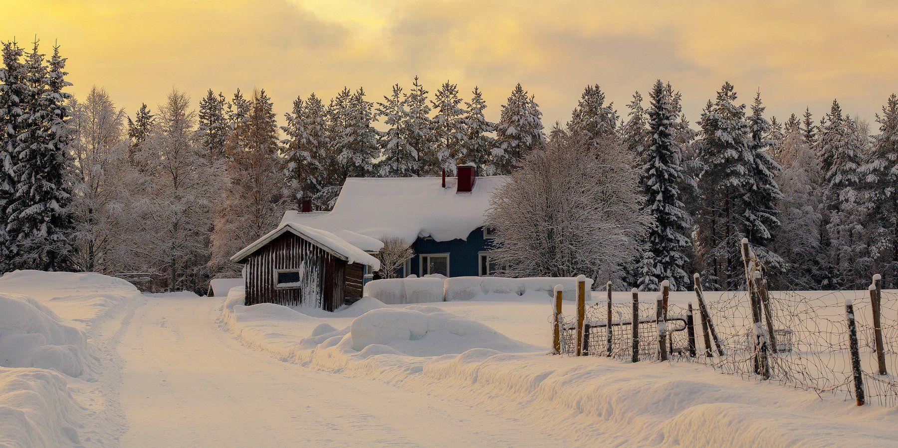 зима, снег, вечер, хутор, дом, закат, лес, дорога., Александр Игнатьев
