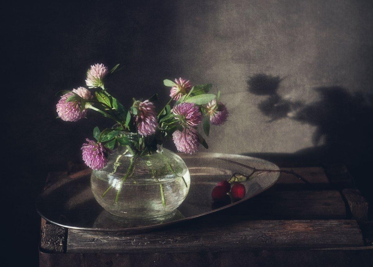 натюрморт,клевер,цветы, Наталия К
