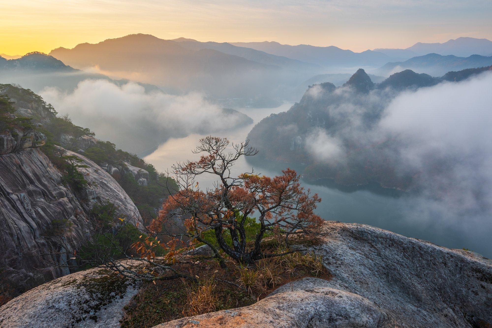 pine, mountains, rocks, clouds, 류재윤