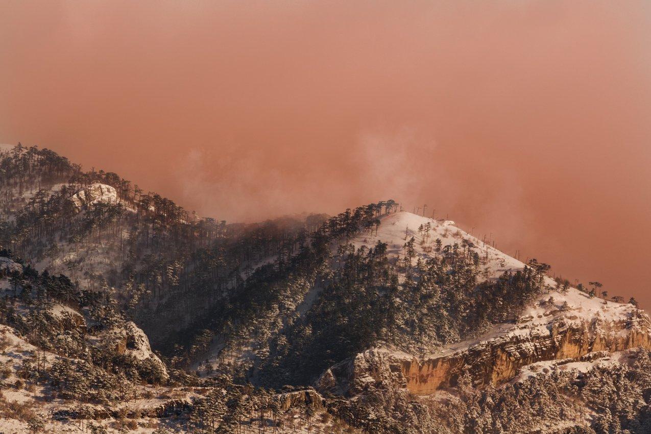 крым,горы,лес,зима,рассвет,розовый,облака,россия,пейзаж,природа,снег,фототур, Elena Pakhalyuk