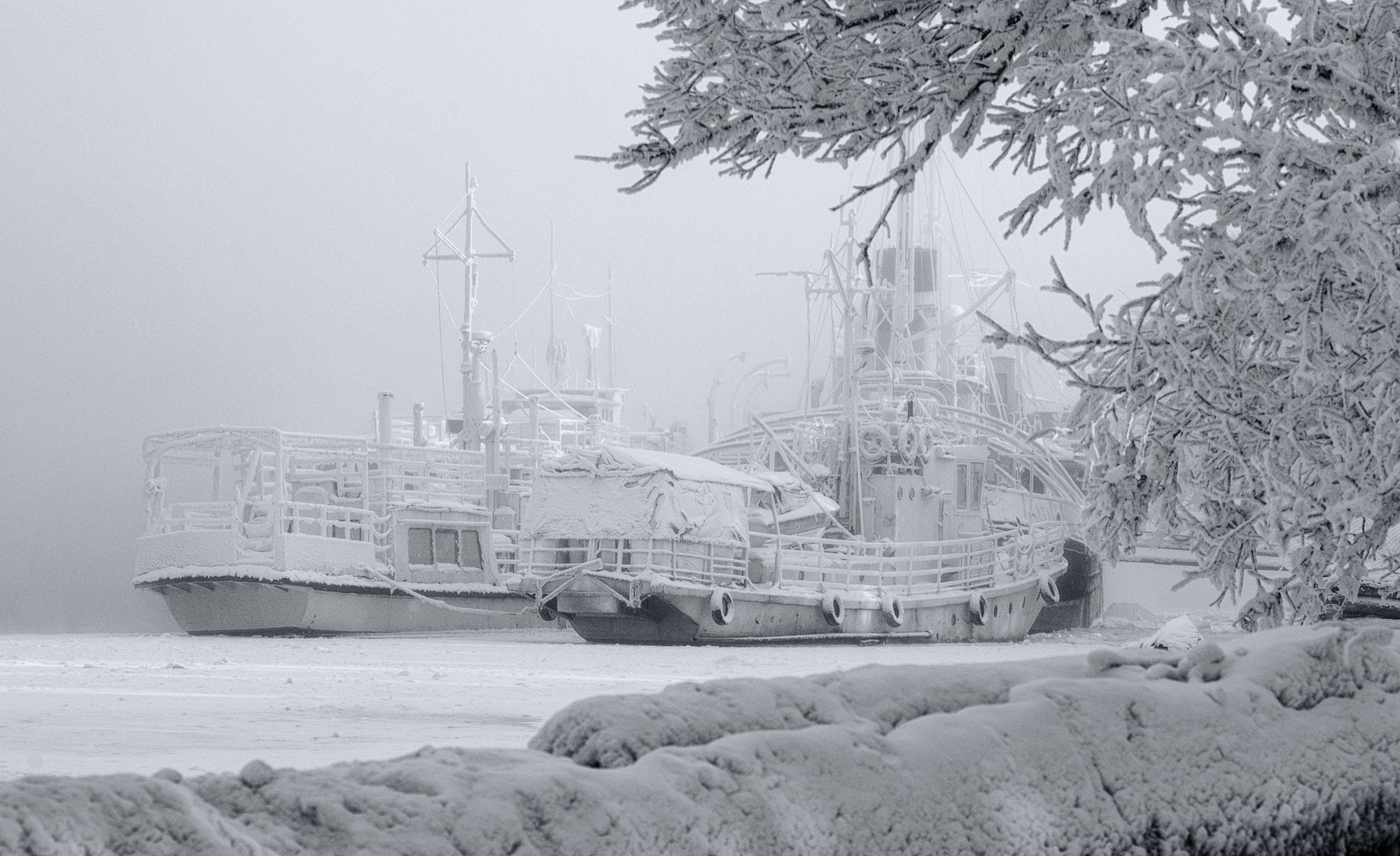 зима корабли причал, Марина Фомина.