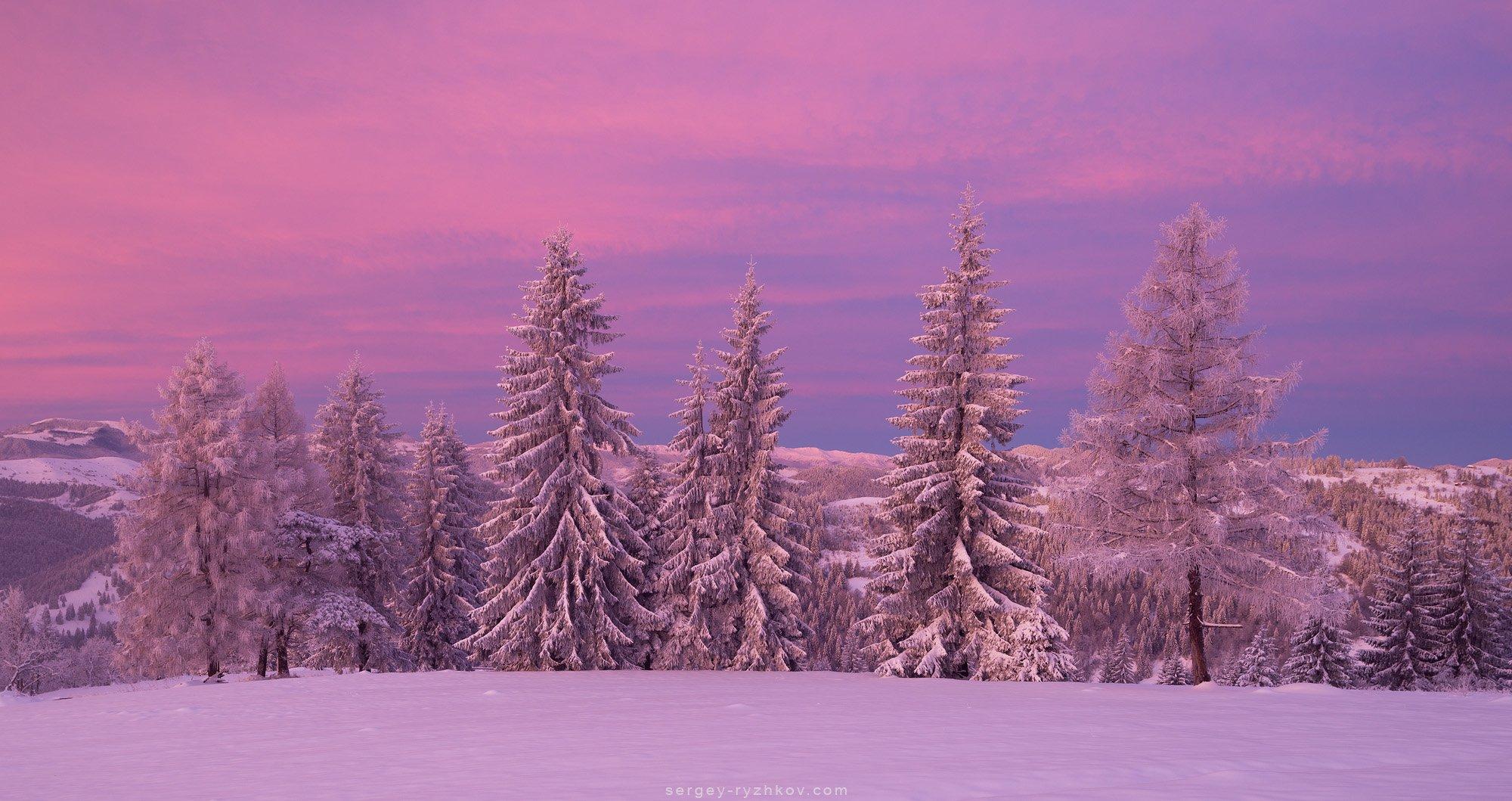 карпаты, горы, украина, пейзаж, зима, лес, снег, winter, mountains, carpathians, ukraine, nature, snow, landscape,, Сергей Рыжков