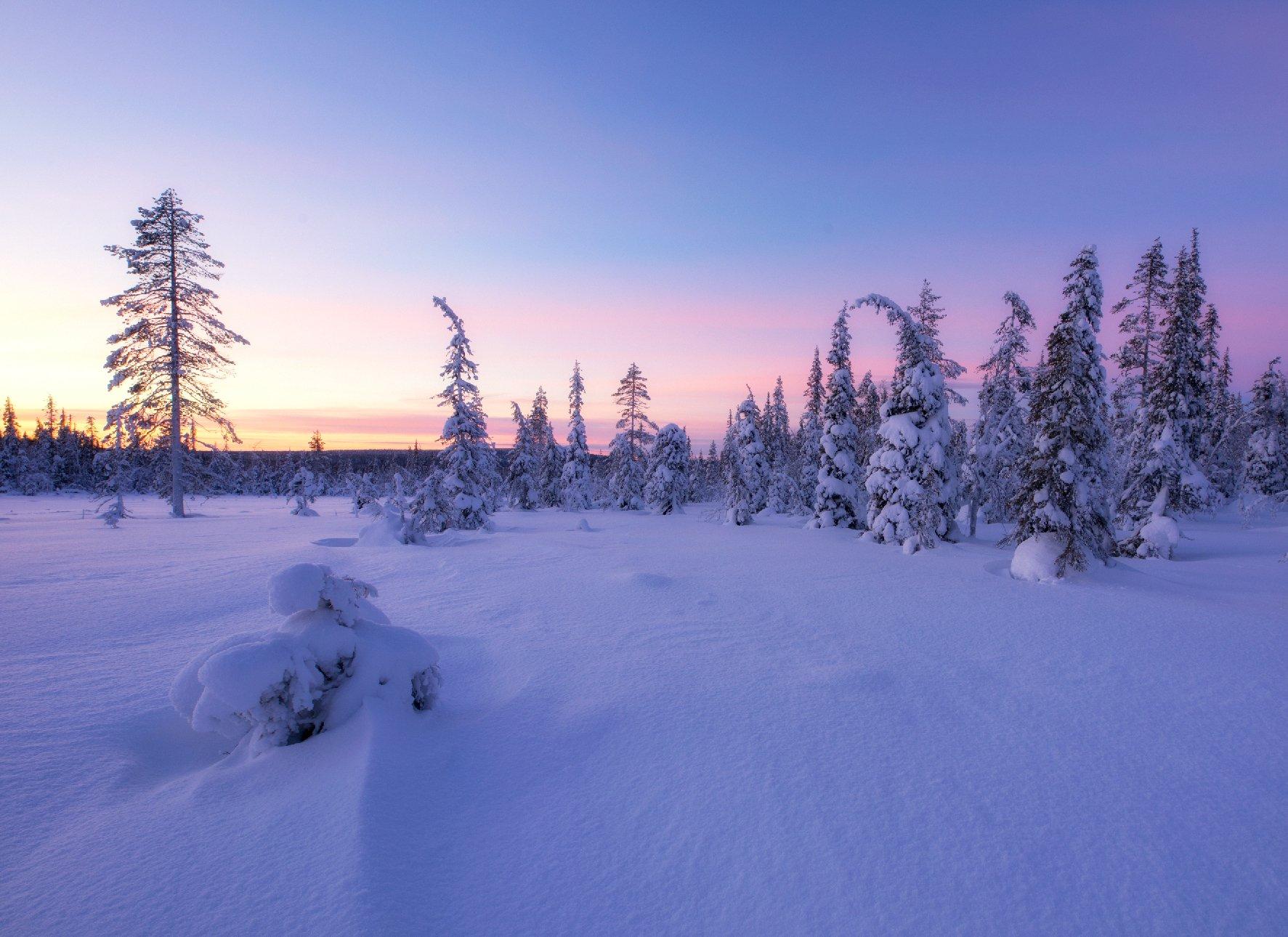 lapland, finland, winter, sunset, Сергей Луканкин