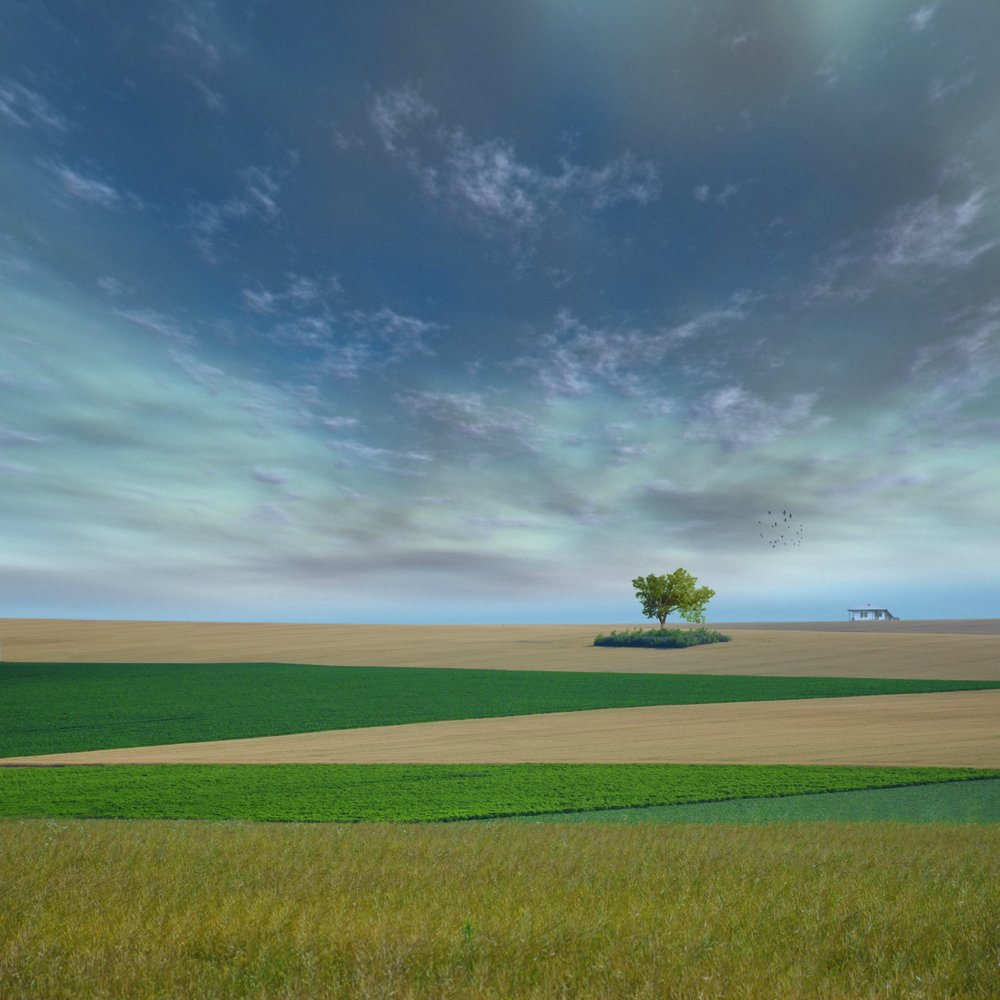 ground, country,. land, fantasy, birds, house, long, traditional, view, Caras Ionut