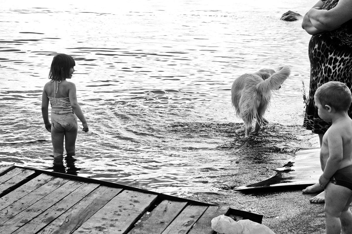 девочка, мальчик, собака, озеро, чб, апатиты, Николай Смоляк