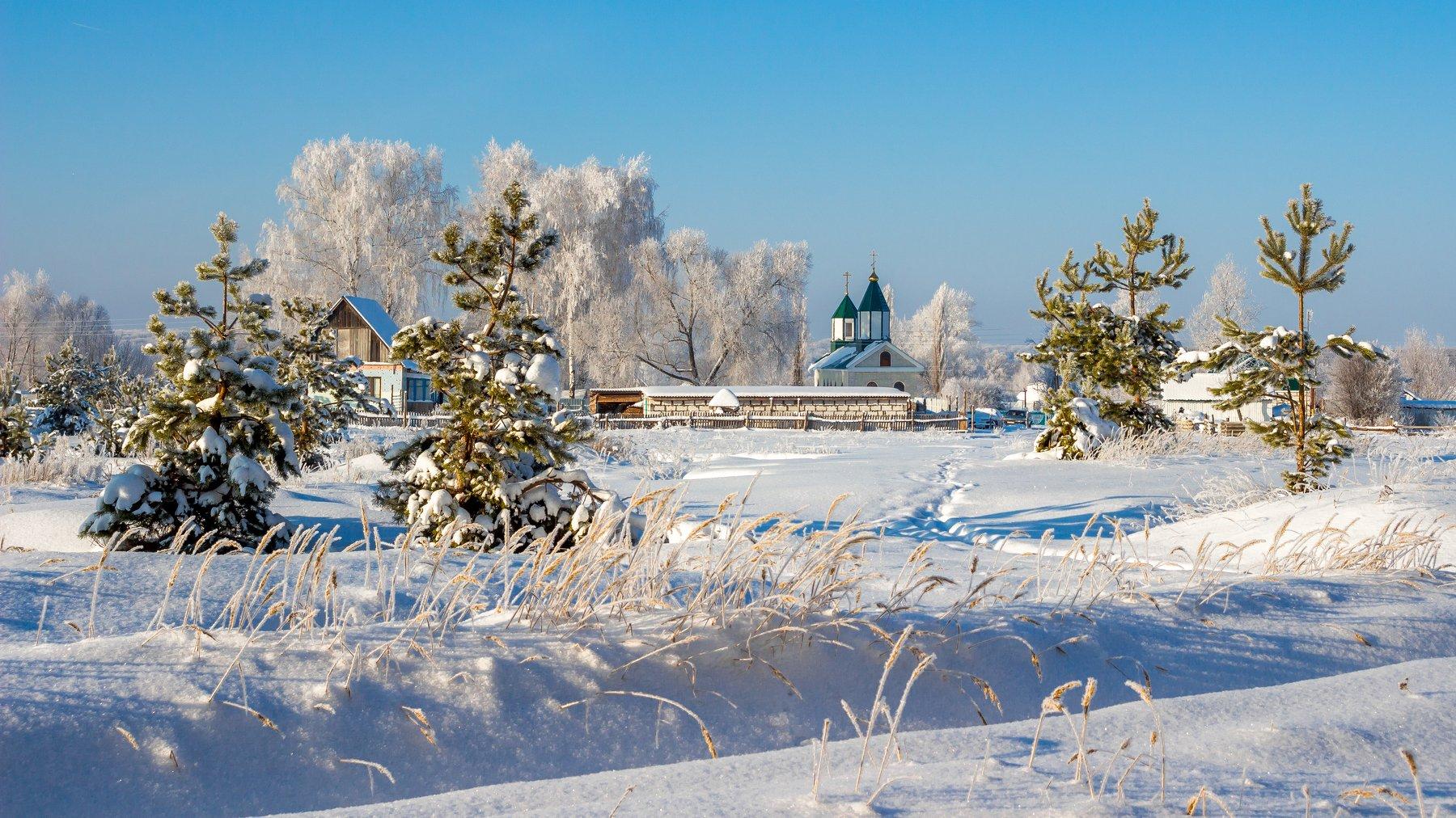 церковь, храм, сосны, мороз, иней, зима, деревня, Руслан Востриков