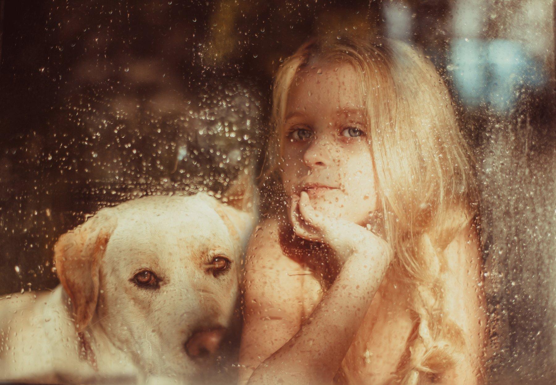 девочка, собака, портрет, окно, стекло, утро, Anna Vinogradova