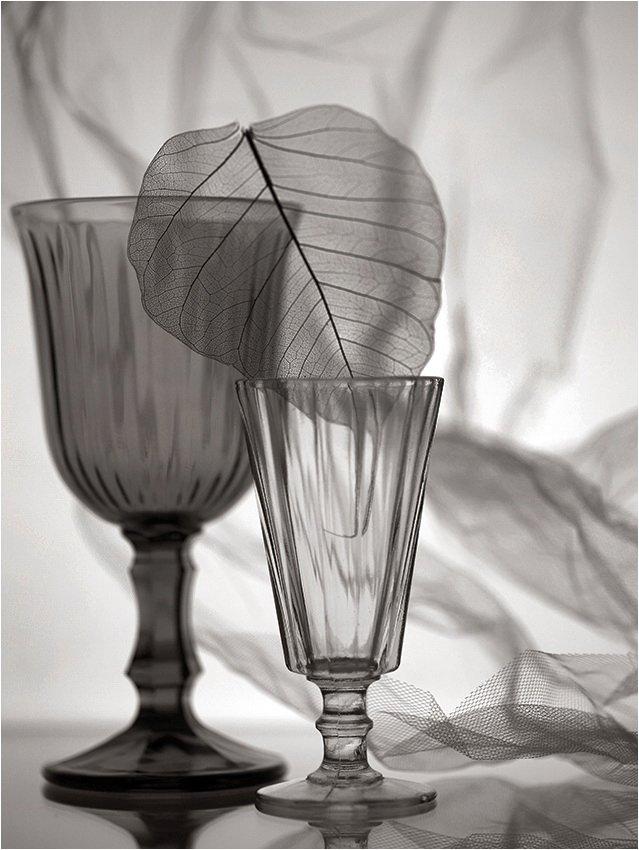 бокал, лист, стопка, натюрморт, драпировка, сепия,, Victor Pechenev