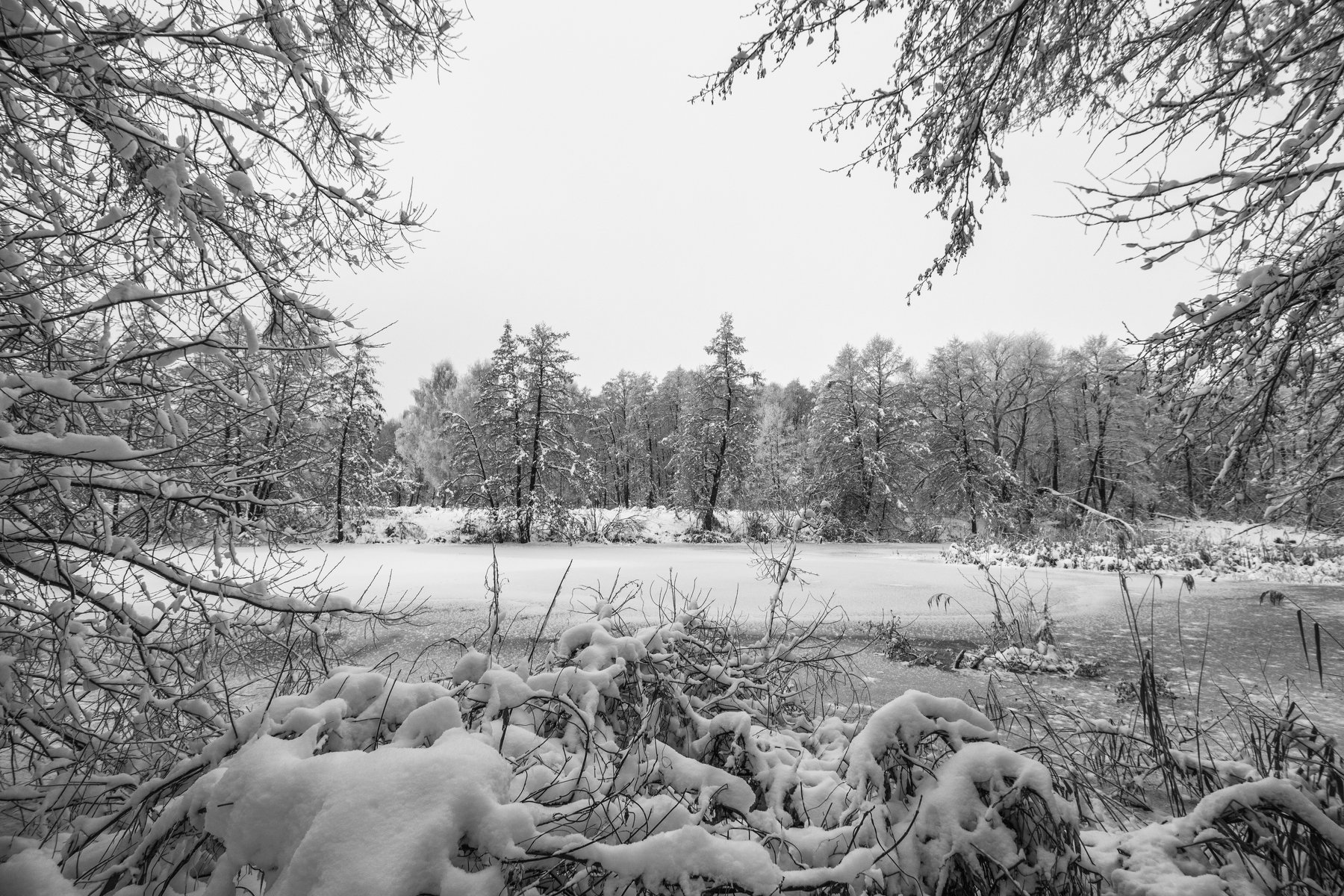 зима, лес, река, озеро, вода, усмань, снег, Руслан Востриков