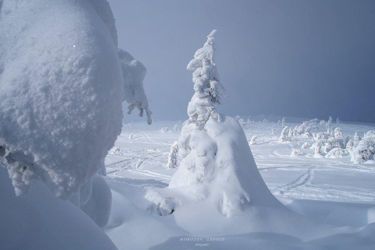 карпаты., украина., зима., пейзаж., снег., карпатский., гора., красивый., небо., природа., дерево., холод., мороз., путешествия., белый., сезон., ель., лес., фон., снежный., горы., зимний., утро., отдых., солнце., лед., изморозь., иней., сцена., синий., с, Leonid