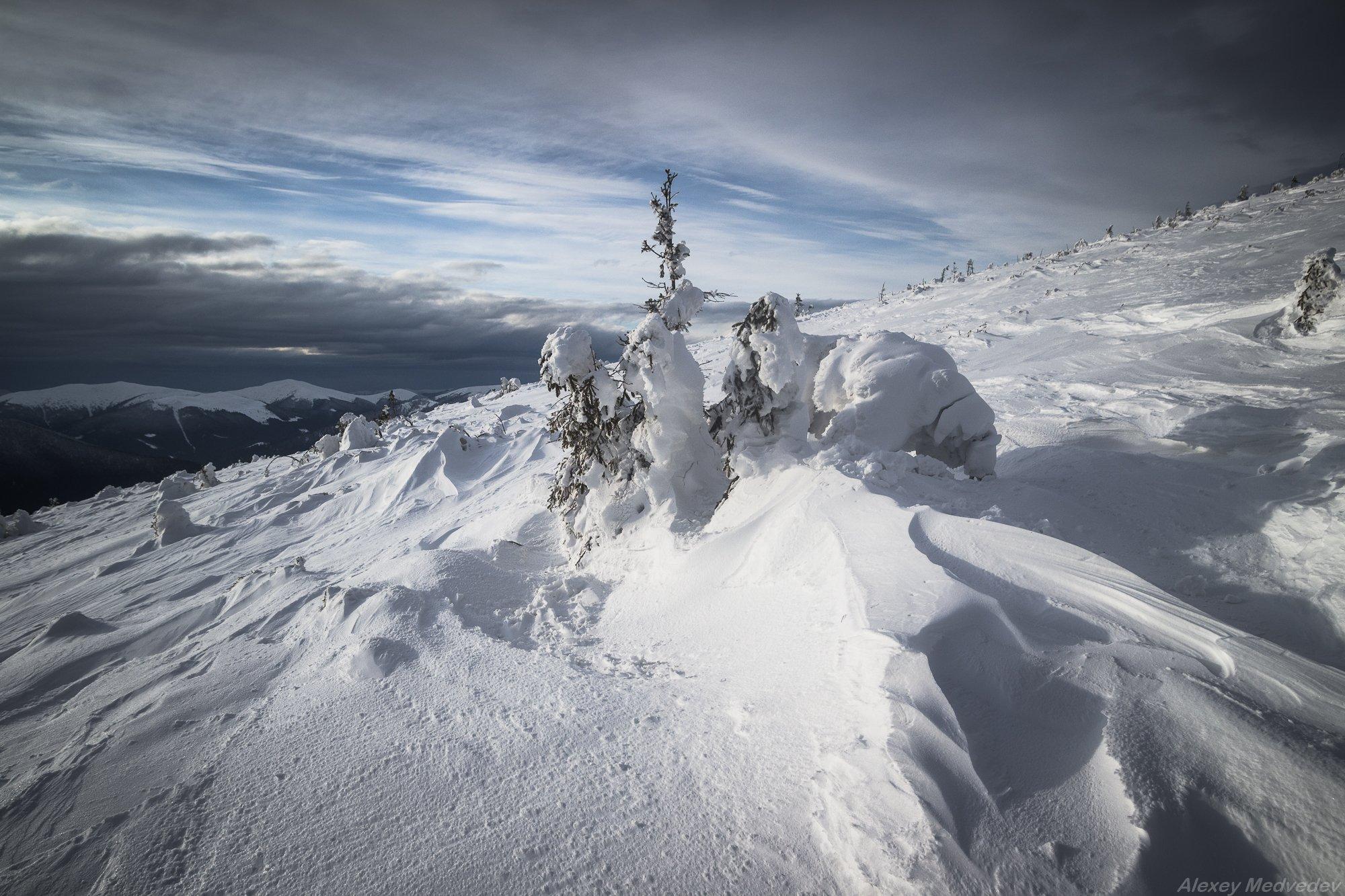 Карпаты, Украина, зима, горганы, Алексей Медведев