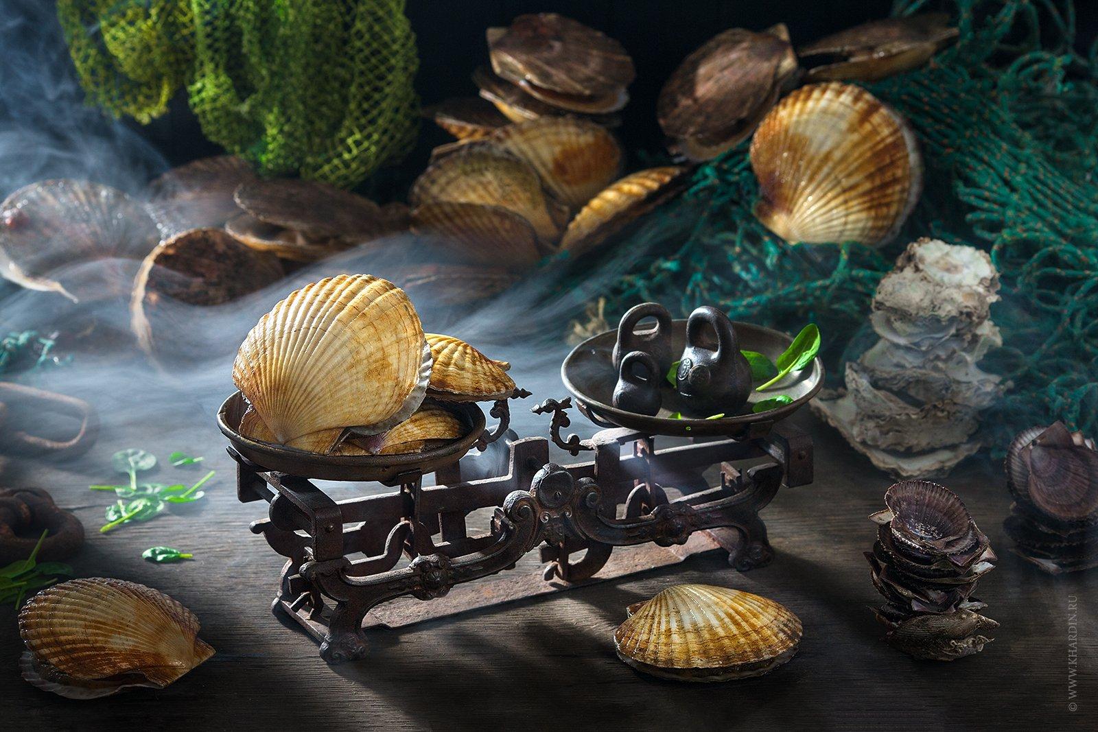 sea, japan, scallop, shellfish, гребешок, потерянное детство, россия, море, Khardin Alexander