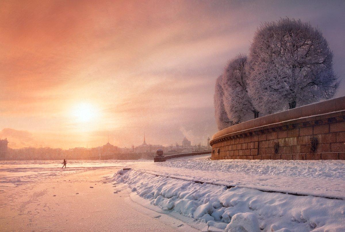 утро, солнце, петербург, деревья, Cтанислав Малых