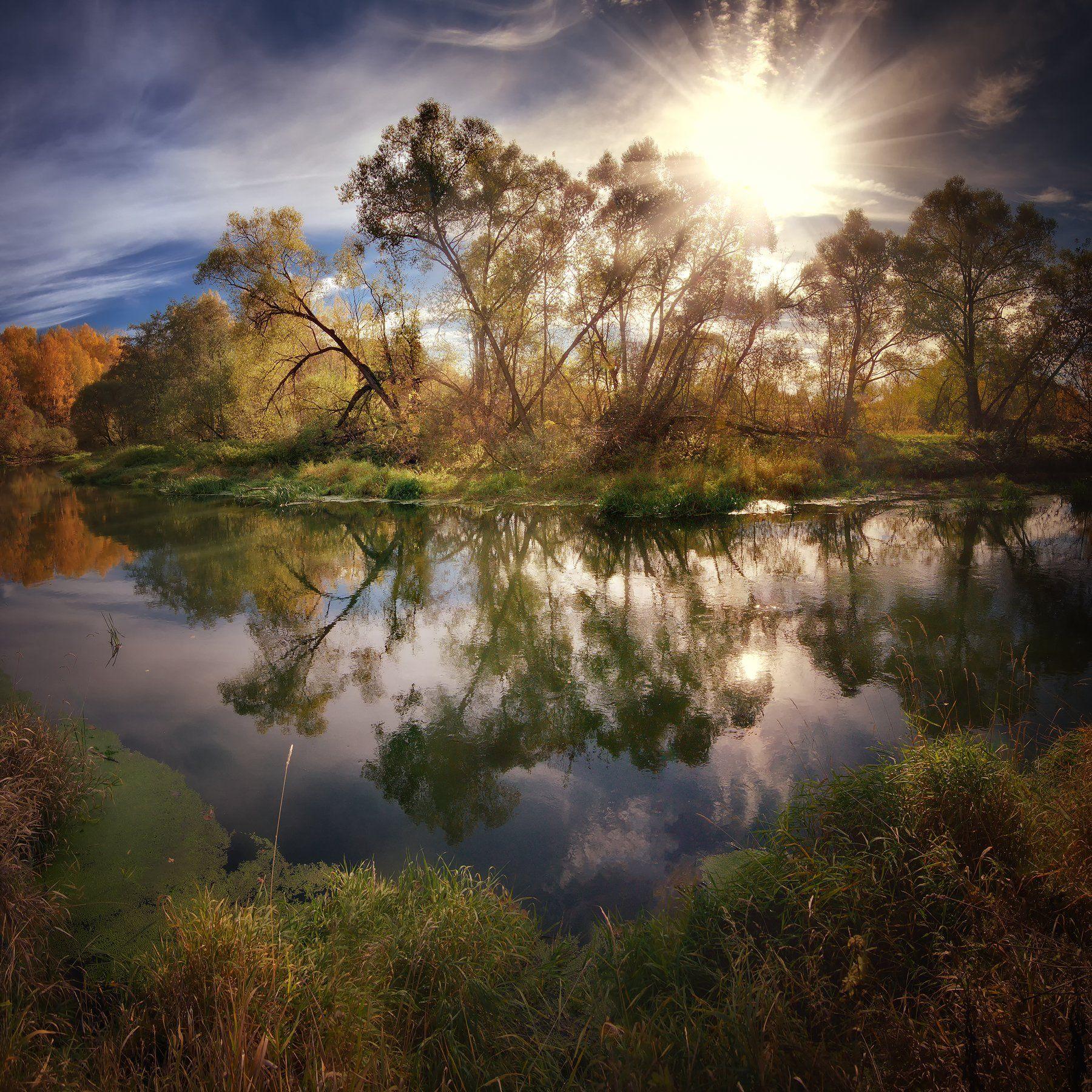 лес, природа, пейзаж, осень, река, вода, ручей, подмосковье, закат, лучи, солнце, Ник Алексей