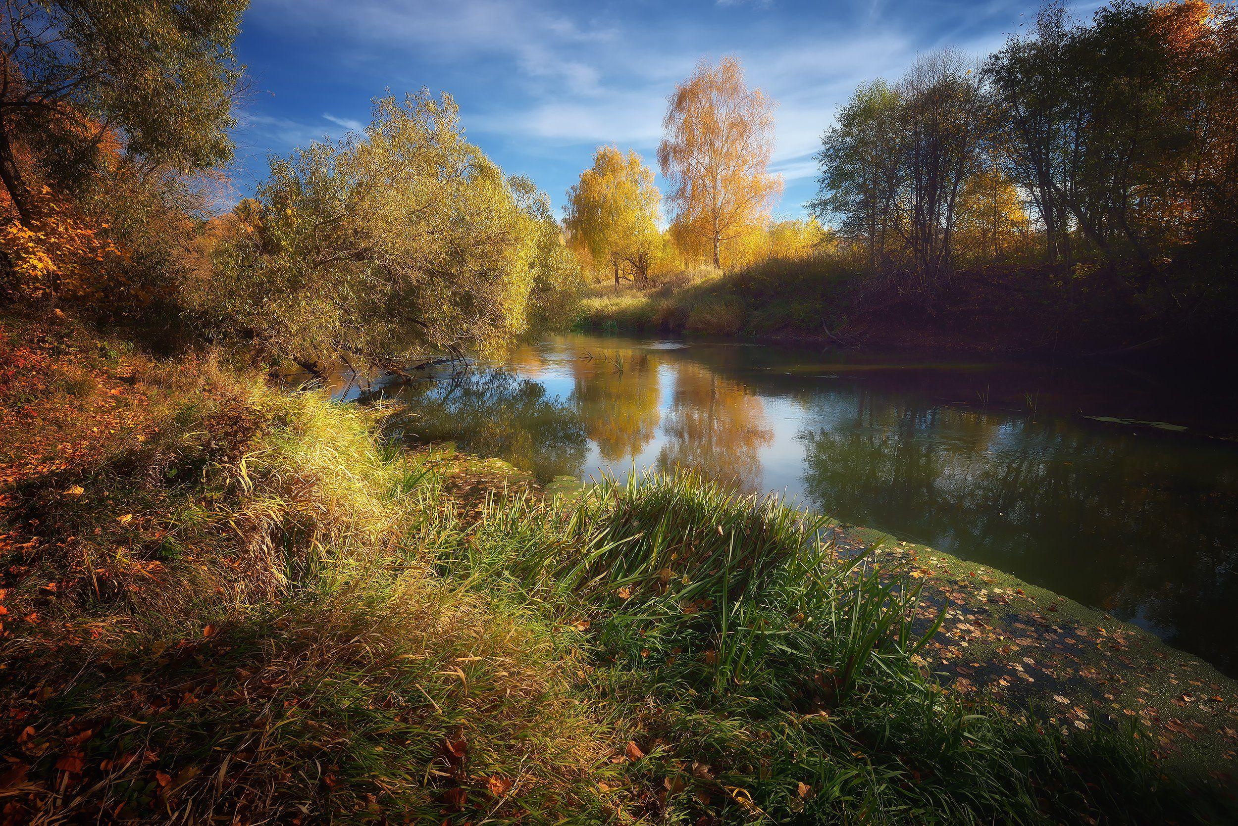 лес, природа, пейзаж, осень, река, вода, ручей, подмосковье, Ник Алексей