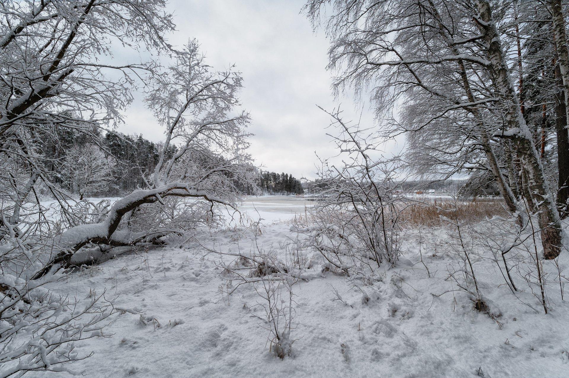 зима,снег,лед,река,вуокса,картина,берега,пейзаж, Евгений Плетнев