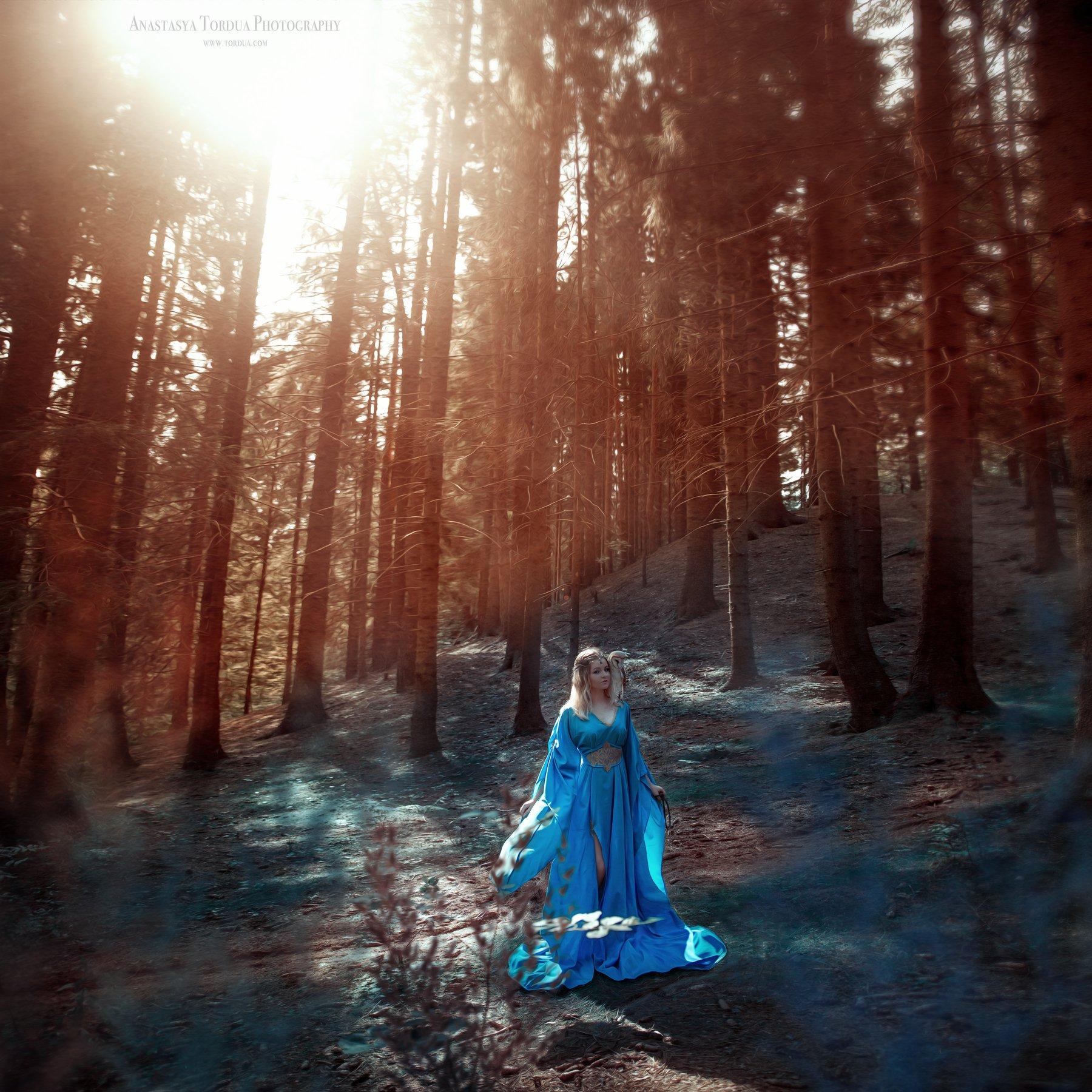 сова,лес,эльфы,эльф,платье,солнечныелучи,осень,сказка,тордуа, Анастасия Тордуа