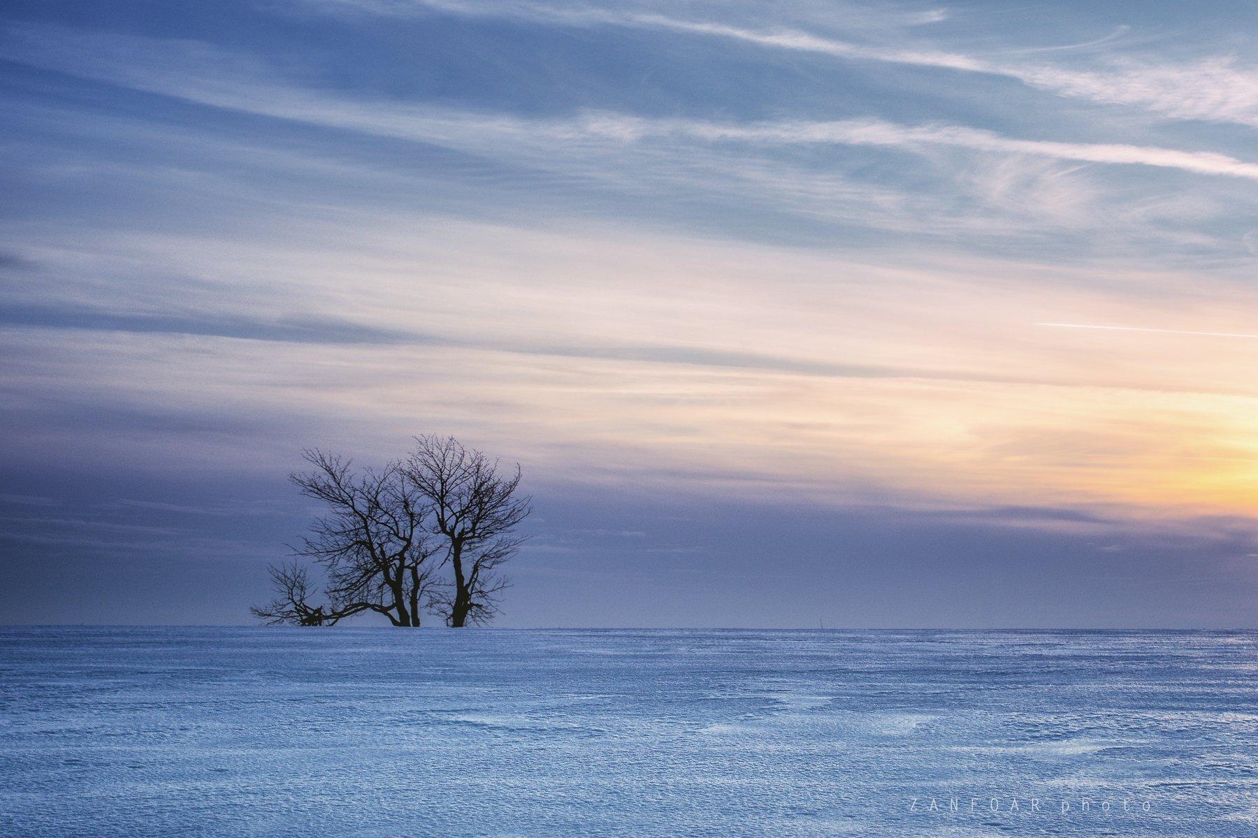 слияние, горизонта,landscape,tree,sky,horizont,winter,zanfoar,czech republic,nikon,чехия, Zanfoar