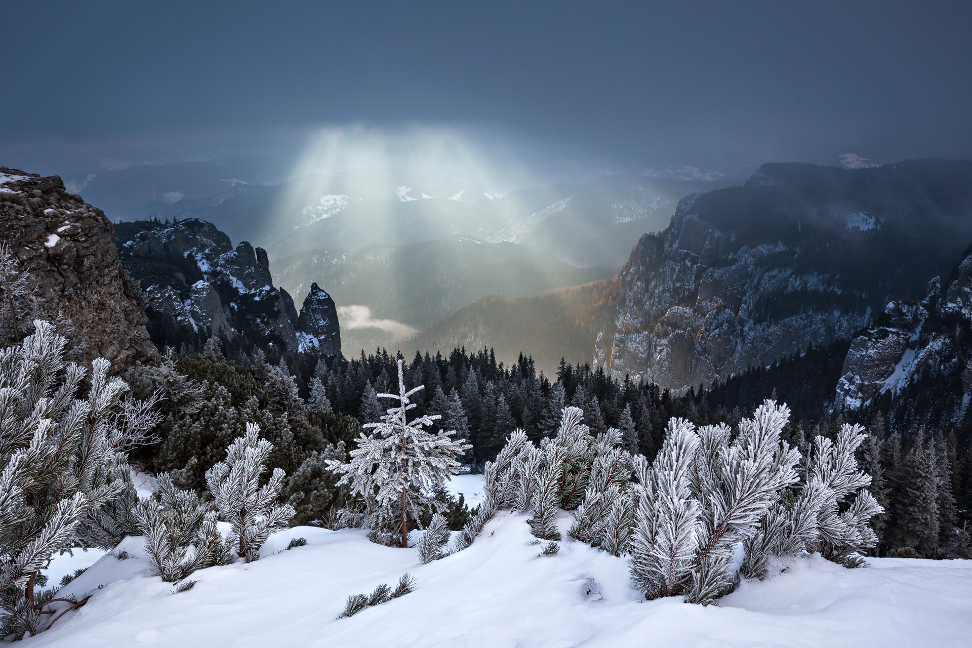 winter, trees, storm, snow, landscape, travel, nature, mountain, romania, cold, sunrise, light, Lazar Ioan Ovidiu