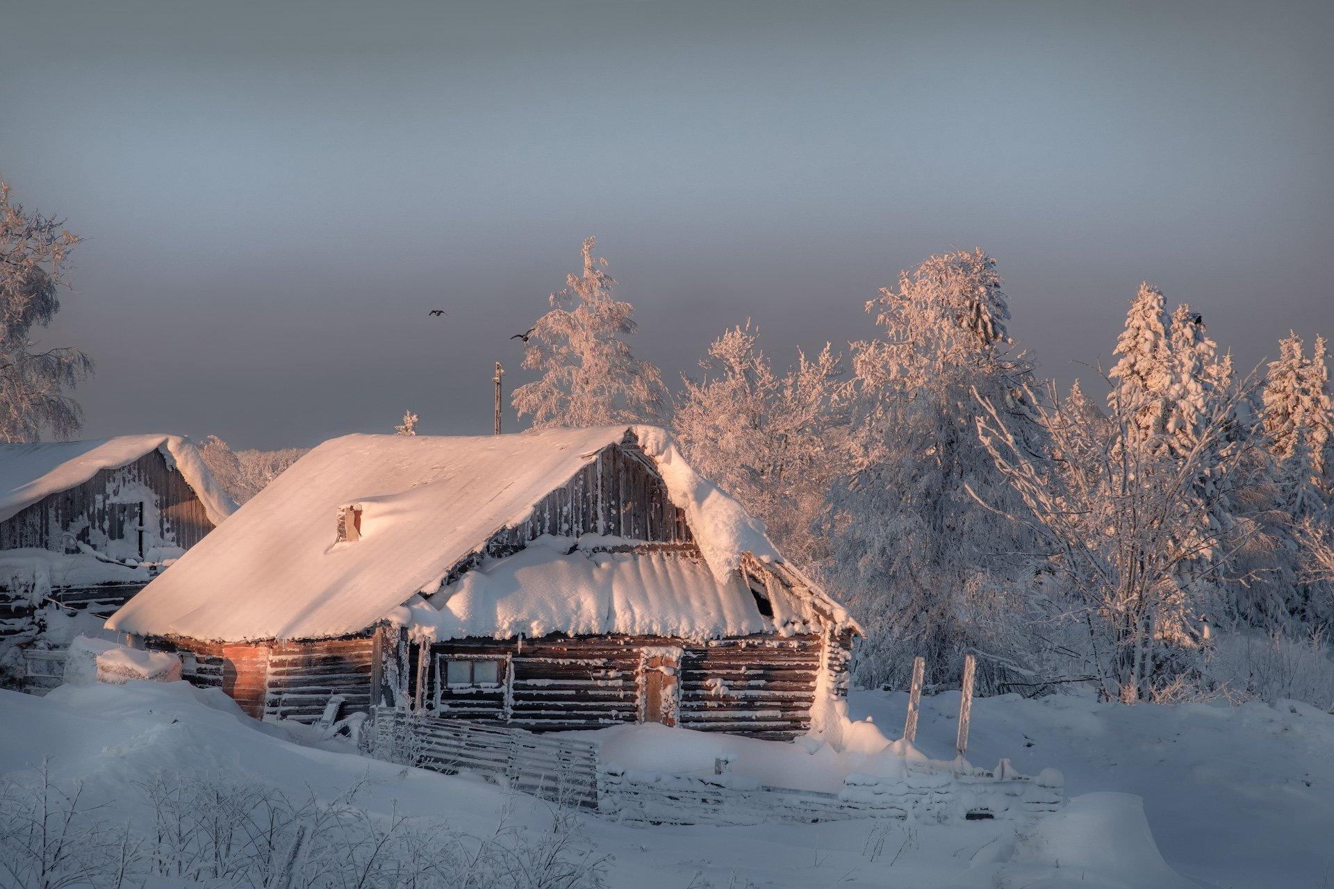 белая гора, урал, пермь, изба, дом, зима, рождество, снег, мороз, метель, пурга, холод, белый, утро, рассвет, Андрей Чиж
