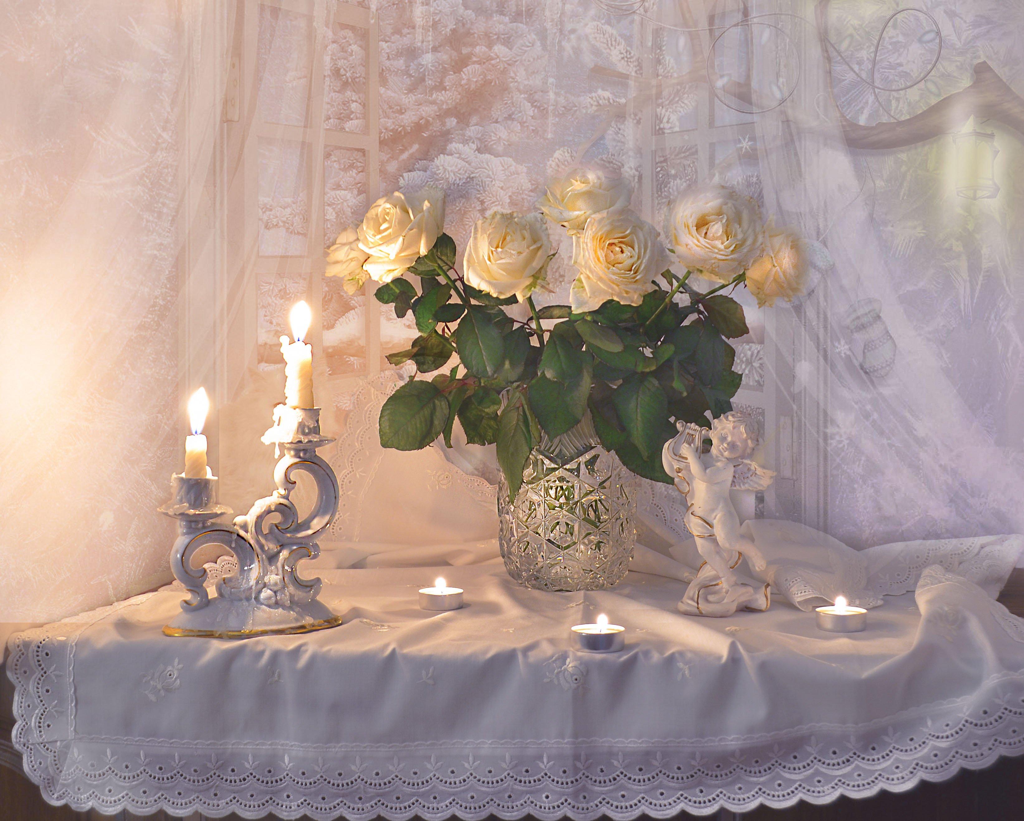 январь, цветы, фото натюрморт, фарфор, татьянин день, розы, поздравление, натюрморт, настроение, морозное стекло, зима, still life, Колова Валентина