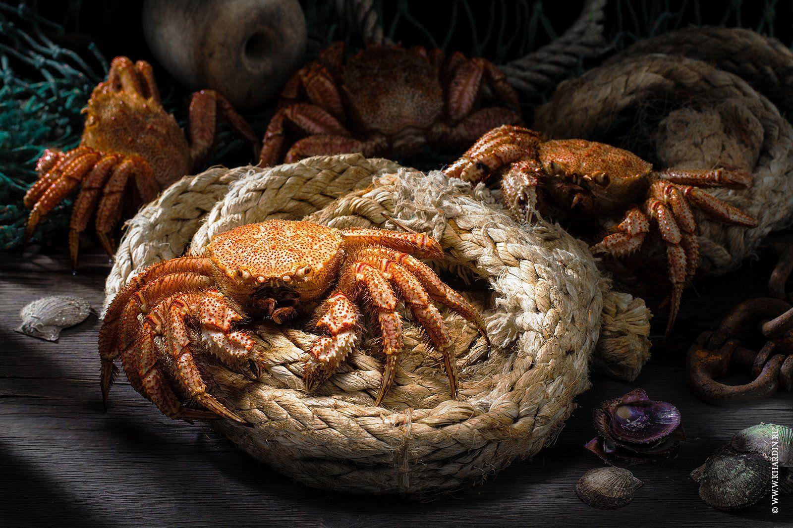 rustic, food, crab, Khardin Alexander