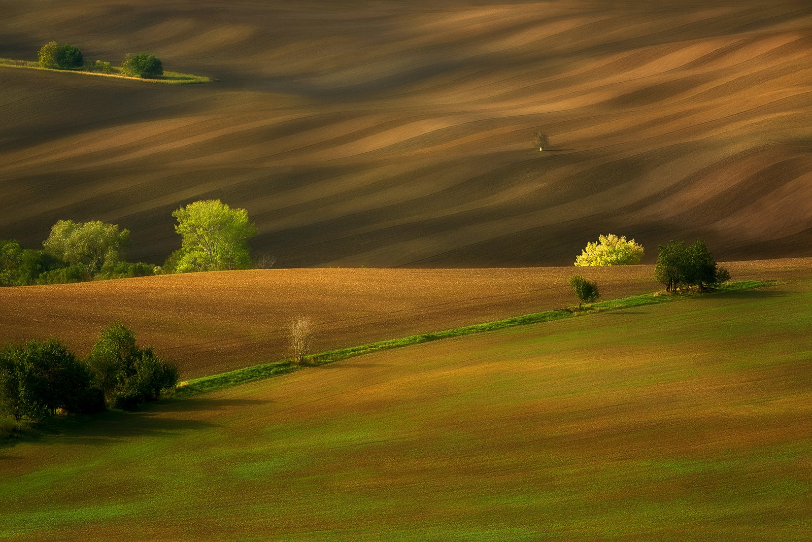 agriculture,background,beautiful,countryside,czech republic,environment,farm,field,grass,green,hill,hills,house,land,landscape,meadow,moravia,nature,outdoor,plant,rolling,rural,scenery,summer,travel,view, Jan Siemiński