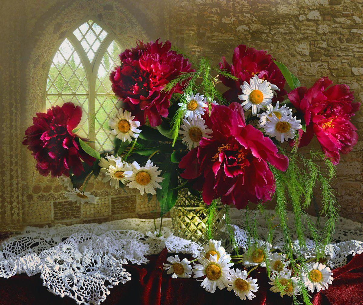 still life,натюрморт, фото натюрморт,цветы, пионы, ромашки, лето, Колова Валентина