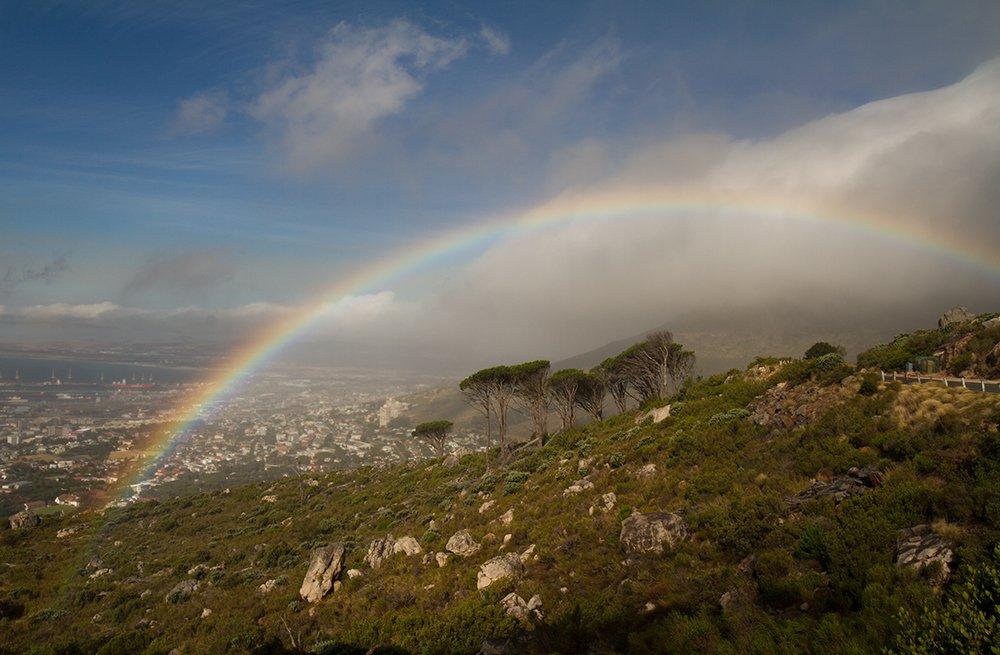 rainbow, Родислав Дрибен