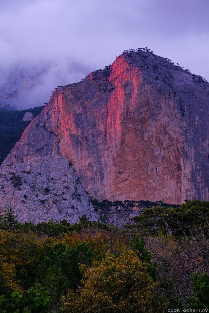 гора,закат,отсвет,шаан-кая,крым,горы,скалы,осень,вечер,тучи,туман,стена,пейзаж,природа,красный,лес, Горшков Игорь