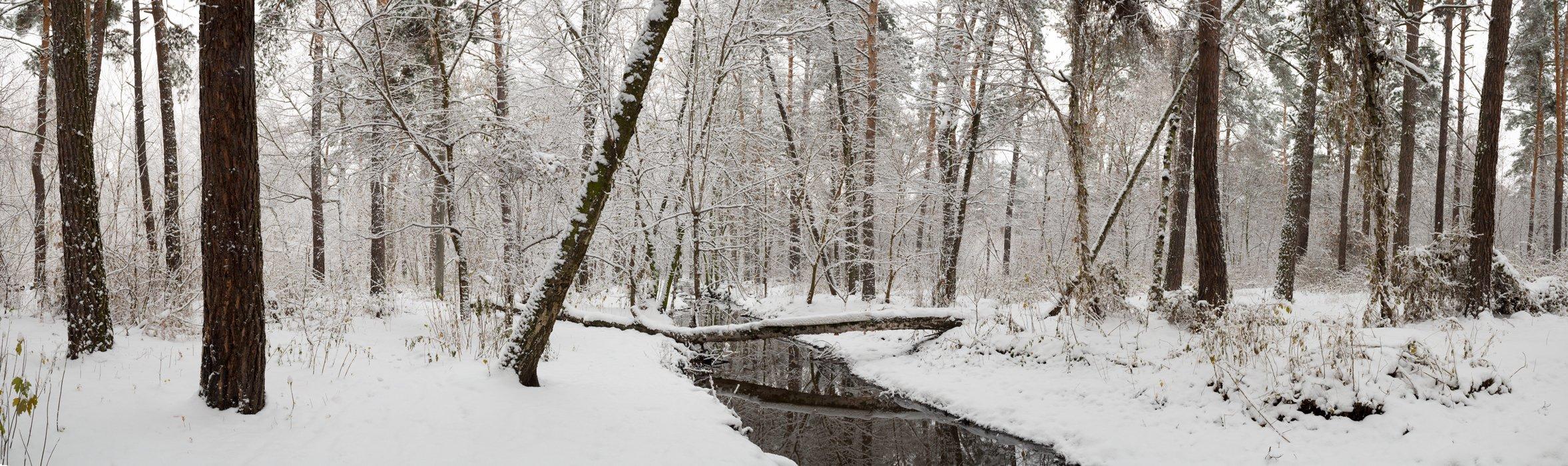 зима, снег, ручей, лес, Галанзовская Оксана