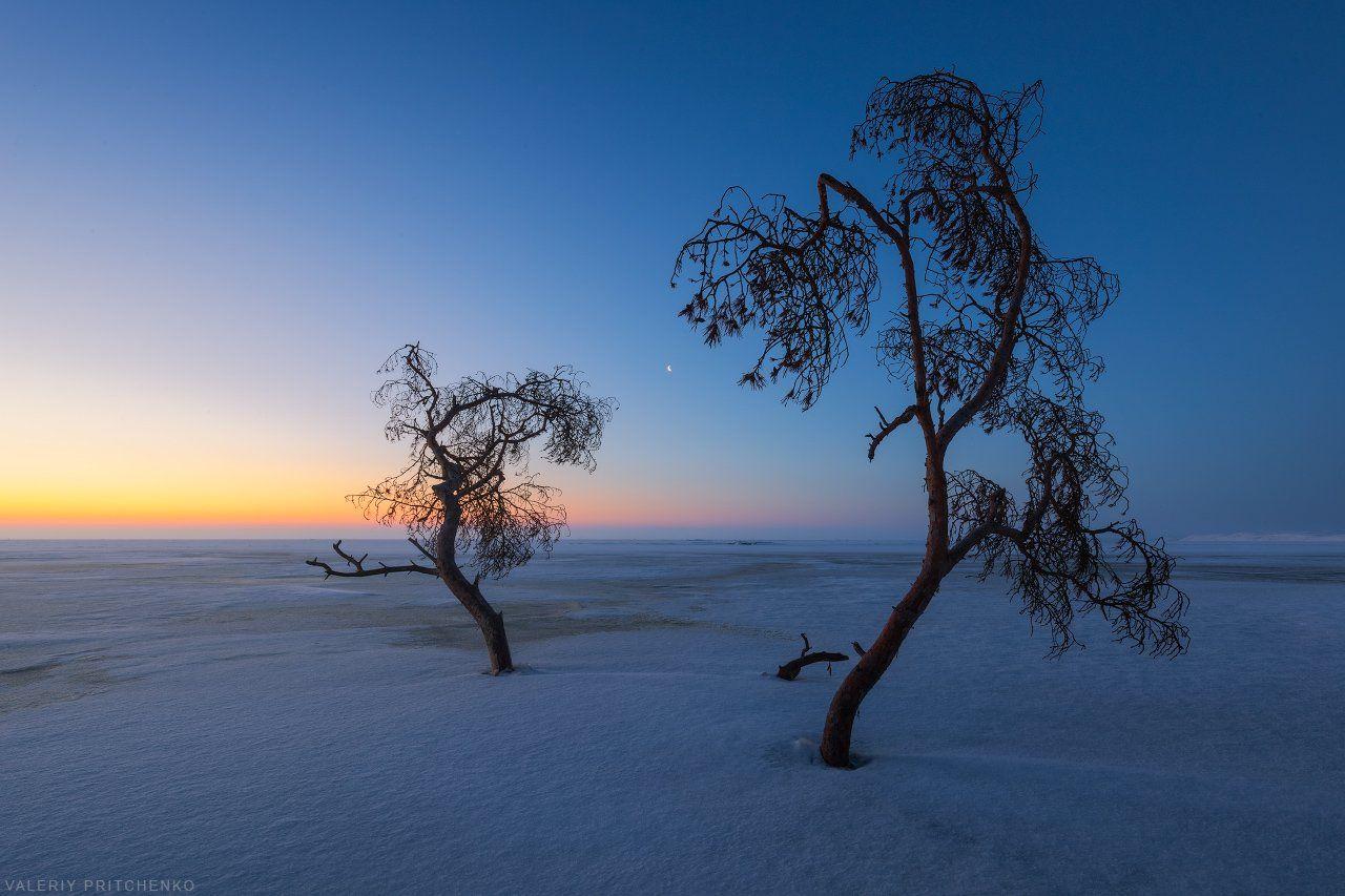 рассвет, пейзаж, утро, природа, sunrise, landscape, nature, Валерий Притченко
