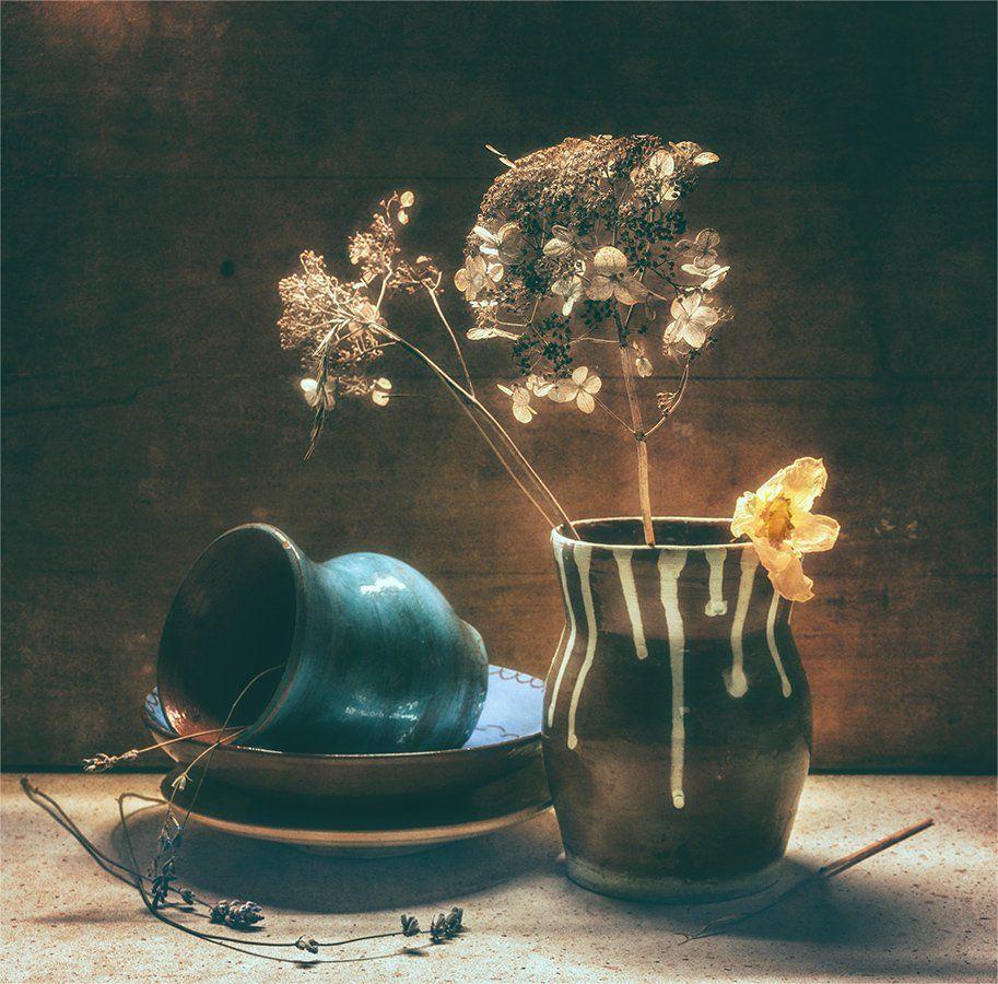 still life, натюрморт,    винтаж,  ретро, засохший, растение, цветок, ваза, керамика, свет, тень,, Шерман Михаил