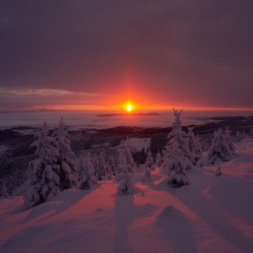 landscape,canon,sunrise,winter,sunrise, Iza i Darek Mitręga