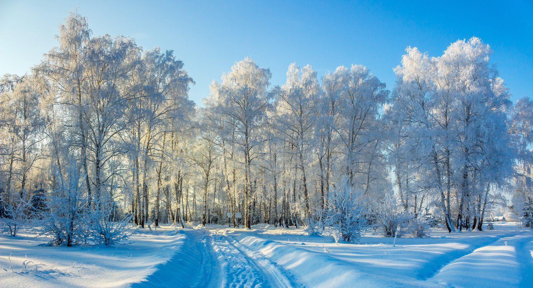 рождество, мороз, лес, иней, зима, дорога, деревня, беседка, Руслан Востриков
