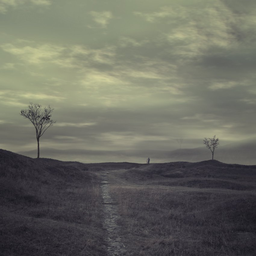 tree, ground, alone, tree, sky, top, clouds, Caras Ionut