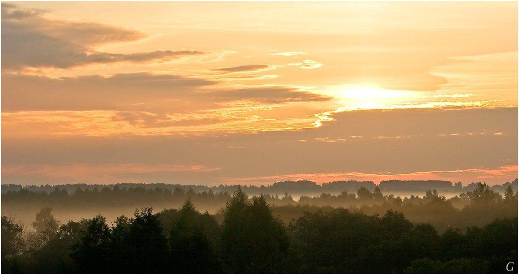 талашкино, рассвет, туман, даль, Gorshkov Igor_Feanorus