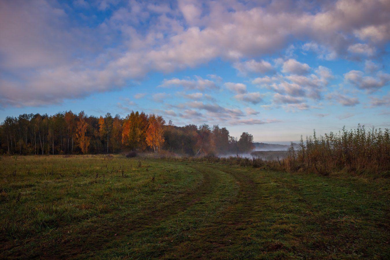 рассвет, поле, лес, небо, река, дымка,, Сергей Шабуневич